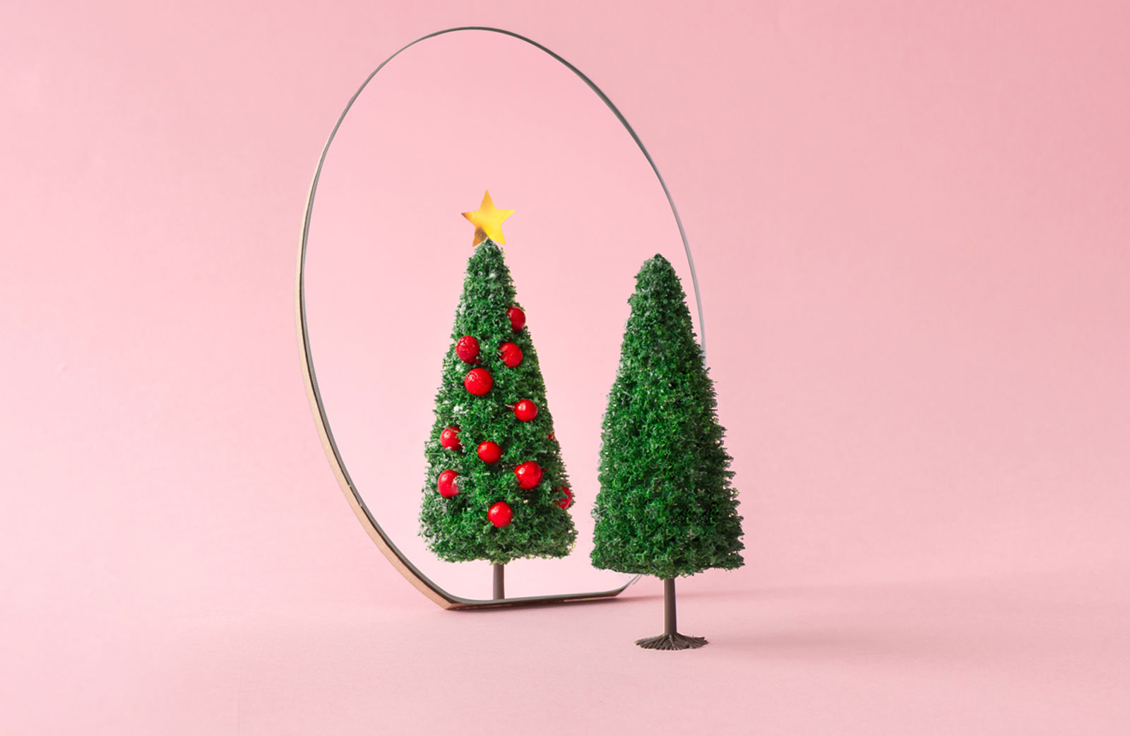 Evergreen conifer in front of a mirror portraying a decorated tree signifying the ultimate experience like AR, VR, and AI